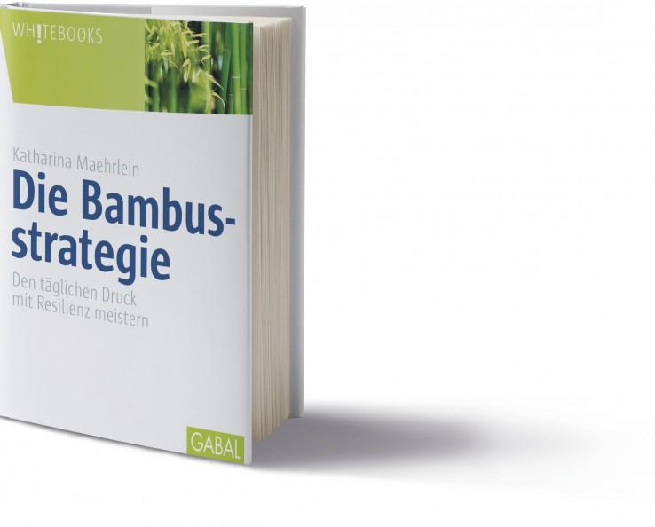 3d Cover Die Bambusstrategie